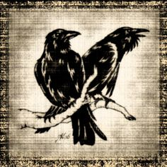 Huginn & Muninn, the two wise ravens that always accompanied the wanderer Odin. Huginn means thought, and Muninn means memory.