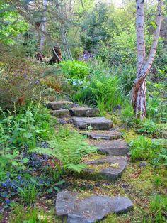 Allee Im Wald-gartenideen Moderne Landschaftsarchitektur ... Garten Landschaft Gestaltung Wald