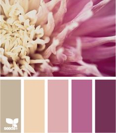 Petal Pallette - Design Seeds®: For All Who Love Color | Search - So subtle & feminine.