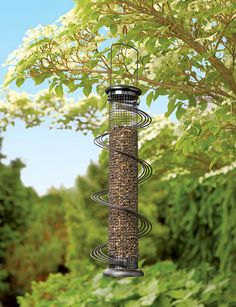 Elegant Feeder Lets Small Birds Dine in Peace