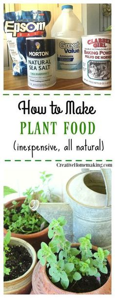 Looking for a way to make your own plant food? Easily make your own inexpensive plant food from these common household products.