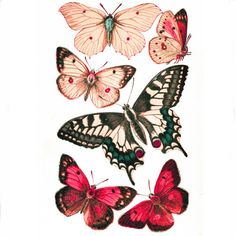 Printable Butterflies in Four Color Schemes | AllFreePaperCrafts.com