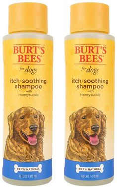 Best Shampoo for a Labradoodle! (2020) 15 Dog Grooming Supplies, Pet Grooming, Dog Supplies, Burts Bees Dog Shampoo, Pet Shampoo, Oatmeal Shampoo, Bee Dog, Dog Wash