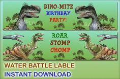 Dinosaur water bottle labels Dinosaur by BirthdayPartyForYou