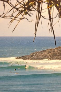 Vogue's guide to Noosa