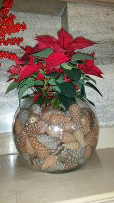 Arriva Natale eee