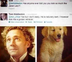 What a cutie. I don't think that's a legit tweet but he has compared himself to a Golden Retriever before and it is an accurate comparison.