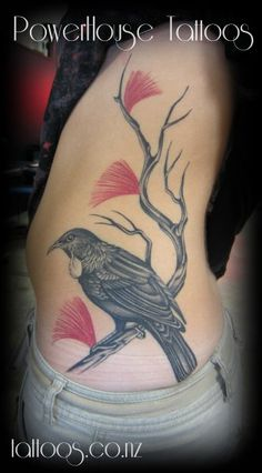 tui bird tattoo - Google Search
