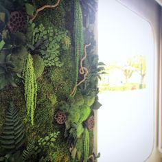 Designer living wall drooping plants