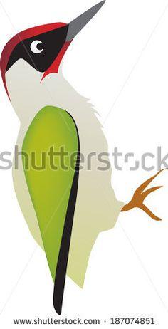 illustration of a woodpecker bird on a white background - stock vector Green Woodpecker, Spotted Woodpecker, Brainstorm Map, Vogel Illustration, Porch Tile, Bird Quilt, Magnolia Flower, Bird Art, Indian Art