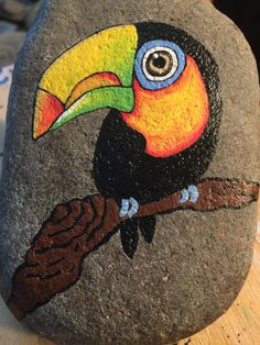 This rock has a toucan painted on it Rock Painting Patterns, Rock Painting Ideas Easy, Rock Painting Designs, Stone Art Painting, Pebble Painting, Pebble Art, Painted Rock Animals, Painted Rocks Kids, Stone Crafts