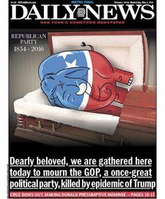 New York Daily News'