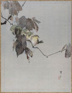 Watanabe Seitei - Birds on a Branch.