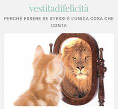 Se io non fossi io, potrei veramente essere io... Lion, Animals, Leo, Animales, Animaux, Lions, Animal, Animais