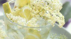 Rezeptsammlung: Holunderblüten-Rezepte | EAT SMARTER