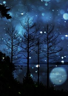 Winter Scene ~ kinda like the cabin view at night........