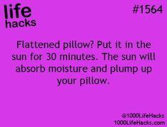 flattened pillow