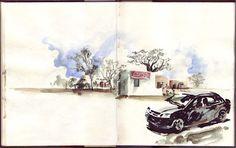Joao Catarino desenhos do dia