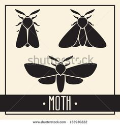 Simple isolated black moth or butterfly on light background. Insect silhouette vector  illustrations set. - stock vector