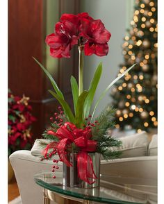 """{$tab:description} Add a splash of color Our 29"""" tall silk amaryllis is a classic holiday floral design and is  always in bloom, unlike its short lived, real counterpart. It's combined in a  6"""" silver glazed ceramic cache pot withmixed pine andcandy apple red  berries, andcomplemented with ahand-tied red satin bow. {$tab:DETAILS}  29"""" Height x 14"""" Width Glazed Ceramic Pot - 5.5""""H x 6""""Diameter Gorgeous SilkAmaryllis Blooms Available in Two Colors - Red and White A..."""