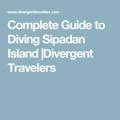 Complete Guide to Diving Sipadan Island  Divergent Travelers