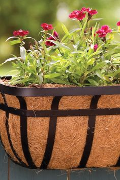 Decorate your deck or patio with a 30'' Flat Iron Deck Planter. Reinforced with a coco liner for maximum aeration, this planter allows you to grow your favorite plants anywhere you want!