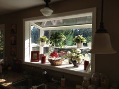 KITCHEN GARDEN WINDOW