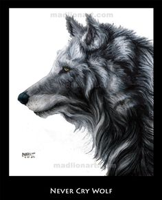Never Cry Wolf by madlion8 on DeviantArt
