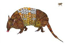 Armadillo art print by NicoleKristiana on Etsy, $28.00