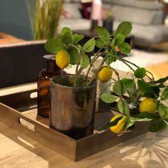 Op zoek naar leuke cadeaus voor de feestdagen? Kijk ook eens bij Trendhopper op Meubelplein Ekkersrijt! #cadeau #gift #cadeauidee #feestdagen #son #ekkersrijt #interieur #home #living #inspiratie #interior #accessoires #cadeaus #meubelpleinekkersrijt #sinterklaas #kerst #eindhoven #blog #interior #interiordesign #design #homedecor #home #architecture #decor #furniture #art #homedesign #interiors #decoration #inspiration #r #interi #interiordesigner #style #livingroom #interiorstyling Moscow Mule Mugs, Home Design, Nars, Tableware, Home Decor, Dinnerware, Decoration Home, Home Designing, Room Decor