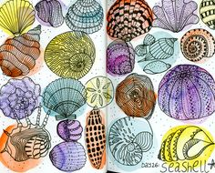 Drawing Doodles Sketchbooks My monthly sketchbook challenge. January 2016 - Day 26 of the 31 things to draw challenge: seashells. Sketchbook Challenge, Drawing Challenge, Art Sketchbook, Shell Drawing, Drawing Drawing, Sketchbook Assignments, Sea Art, Flower Doodles, Sketchbook Inspiration