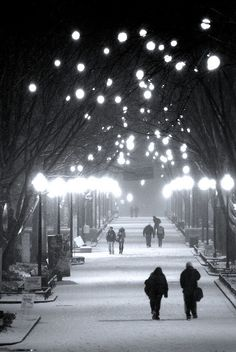 Locust Walk - a snowy thoroughfare. These lights provide refuge for me in the sometimes drab city of Philadelphia.