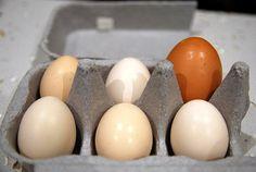 sí es necesario, sobre todo en pastelería y repostería como bien sabemos, o en elaboraciones saladas en las que uno de los ingredientes tiene un importante papel, como puede ser el huevo. Precisamente es un producto que se suele indicar por cantidades en los recetarios tradicionales, pero ¿cuánto pesan los huevos?Hace ya varios años que en España nos sumamos al 'tallaje' de los huevos según la normativa de la Unión Europea