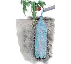 Selvvandingspotter. Lav masser af huller i en plastikflaske og put den i jorden når du planter. Du kan nu vande plantens rodnet