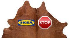 IKEA: stop to the use of animal skin in the carpets. IKEA ,apparentemente attenta a problematiche ambientali e pronta a comunicarlo con efficacia, ancora oggi  vende prodotti realizzati con pelle animale , come i tappeti di pelle di pecora LUDDE o di mucca KOLDBY.  È ora di dire  basta al consumo acritico e all'incentivo della produzione di pellami...