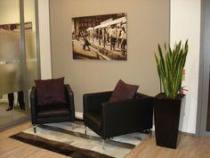 professional office decorating ideas - plant!
