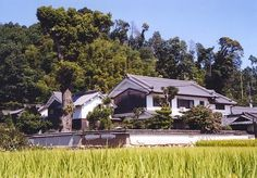 Large farmhouse surrounded by rice paddies