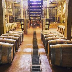 """""""What a pleasure to work in such an amazing place"""" #wine #cellar #uruguay #regram by @tapascazi @narbonawinelodge #wineproducer by relaischateaux"""