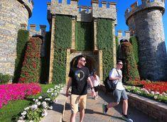 Jaz v rož'cah. Miracle Garden, Sunny Days, Dubai, Walking, Places, Flowers, Travel, Instagram, Viajes