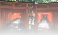 Best local restaurants near Kyoto Fushimi Inari Shrine
