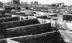 Murs à pêches - Montreuil