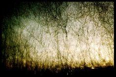 Mystical (LazyLens 20131206 041325 HD)
