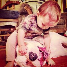 The American Bulldog and the American bullyboy. (This is so our little man and our Nick Nick) Doggies, Dogs And Puppies, American Bulldogs, Bulldog Pics, Bull Dog, Bullies, Four Legged, Large Dogs, Best Dogs