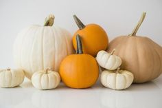 44 Free Halloween Party Games for Adults: Guess the Pumpkin's Weight