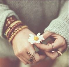 flowers, rings, and daisy image