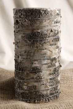 Birch Bark 9 Vases $8.49  each / 3 for $7.49  each http://www.save-on-crafts.com/birchvases2.html