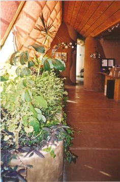This earthship has planter boxes along the south wall of windows – a common feature in earthships. Also note the poured concrete floors – very durable!