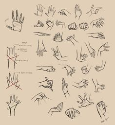 Hands Reference I by =Ninjatic on deviantART ✤ || CHARACTER DESIGN REFERENCES | Find more at https://www.facebook.com/CharacterDesignReferences if you're looking for: #line #art #character #design #model #sheet #illustration #expressions #best #concept #animation #drawing #archive #library #reference #anatomy #traditional #draw #development #artist #pose #settei #gestures #how #to #tutorial #conceptart #modelsheet #cartoon #hand