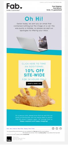 Meow. Our goof is your gain. Additional 10% off today only. | Email Institute
