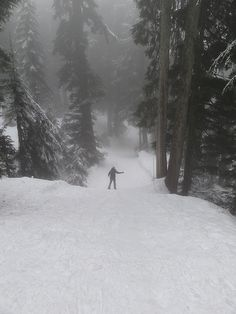 Snow shoeing on Mount Seymour, North Vancouver, by Holsosocial